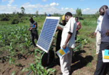 agriculture kenya africa middle east