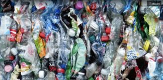UAE plastic waste