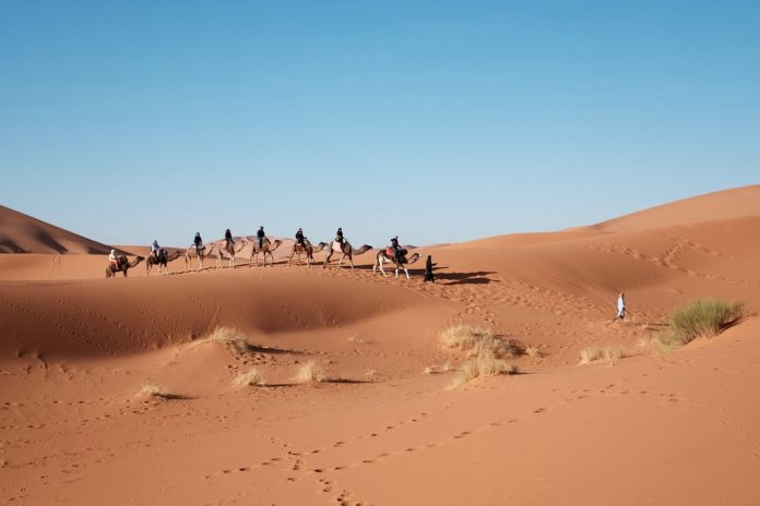 Abu Dhabi, desert, China