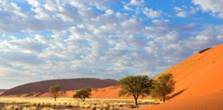 UAE ecotourism, natural wonders