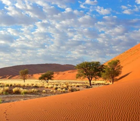 UAE ecotourism, natural wonders