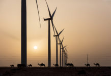 wind farming, Morocco, blockchain, bitcoins, Soluna, wind, energy, sustainable, renewable,