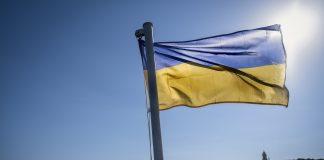 kyiv kiev ukraine flag agriculture bytheeast david hury